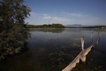 Pêche sur l'étang de Terrenzana.