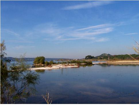 Zone humide de l'étang de Berre. Crédit photo : GIPREB