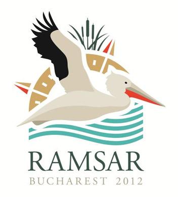 Logo COP 11 Bucarest 2012