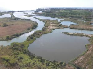 Vue aérienne des étangs de Villepey P. Texier