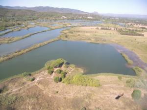Vue aérienne des étangs de Villepey © P. Texier