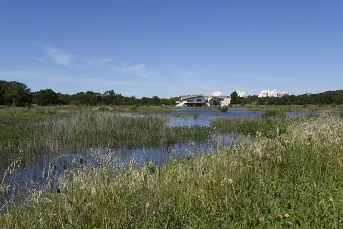 Inauguration De La Maison Et Ouverture De L Espace Nature Departemental Du Plan Var Pole Lagunes